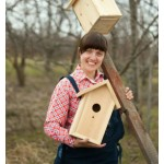 What to Know Before Building a Birdhouse