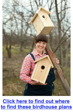 Myra with birdhouses